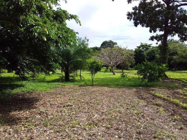 se-vende-finca-diria-nicaragua (11)