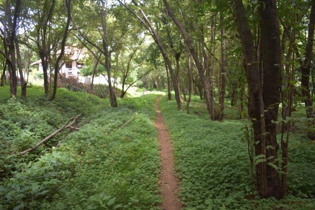 Vista-Eco-offgrid-Nicaragua (11)