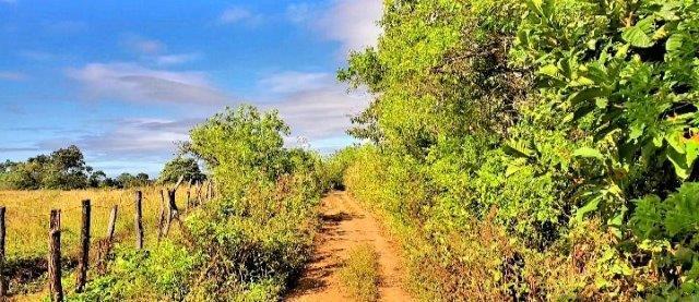 nagarote farm nicaragua