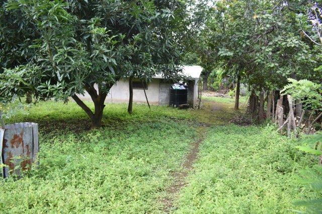Mombacho-land-for-sale (12)