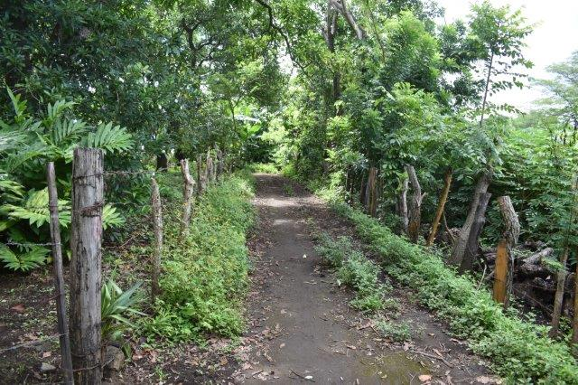 Mombacho-land-for-sale (6)