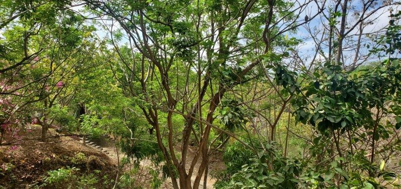 Nicaragua-real-estate-san-juan-del-sur (20)