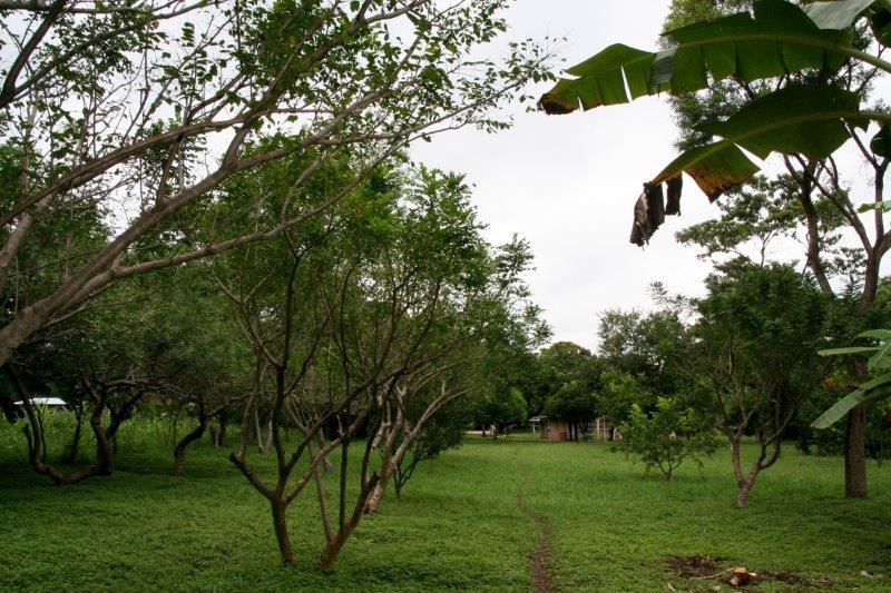 Nicaragua+real+estate+granda+farm+home+Quinta+Tio (23)