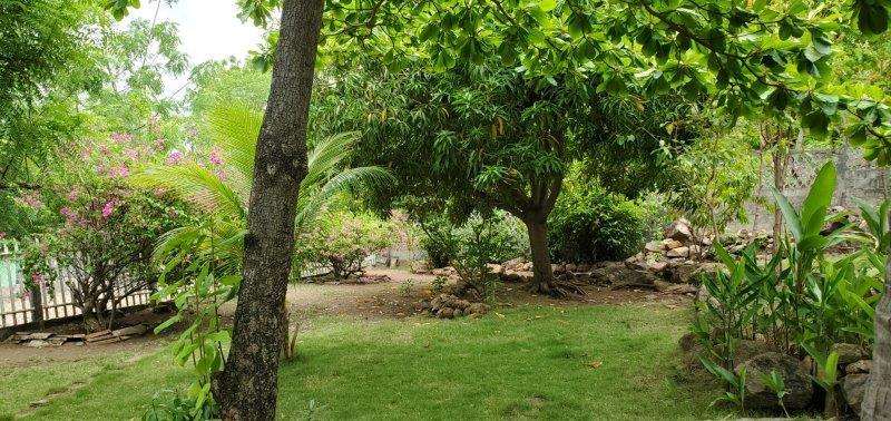 nicaragua bienes raices (2)
