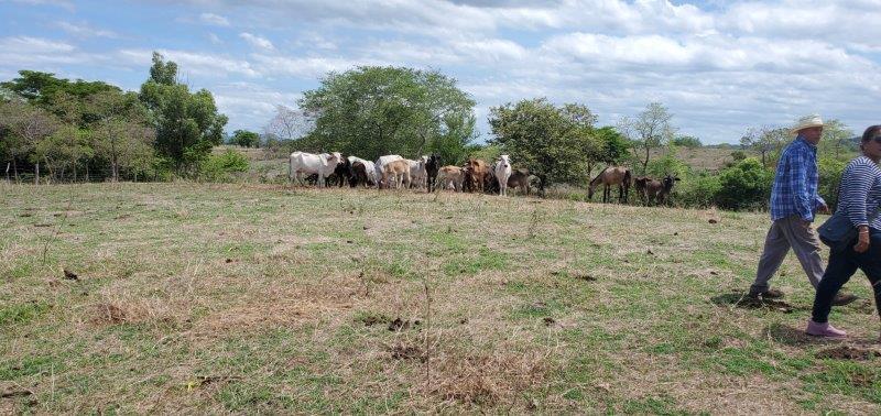 nicaragua-real-estate-land (4)