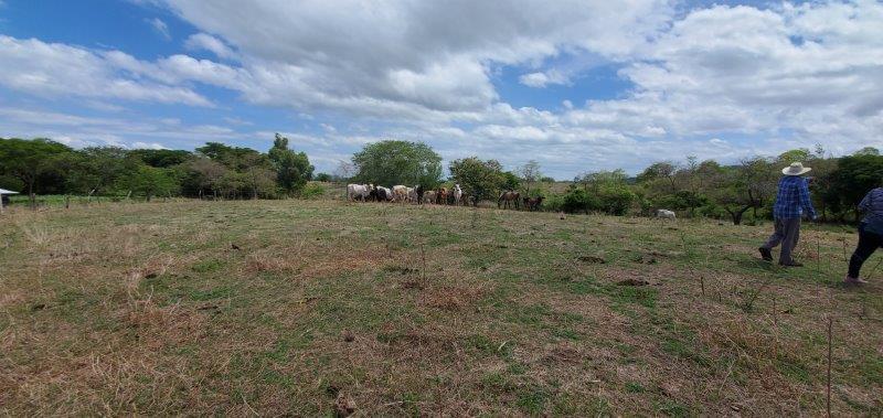 nicaragua-real-estate-land (5)