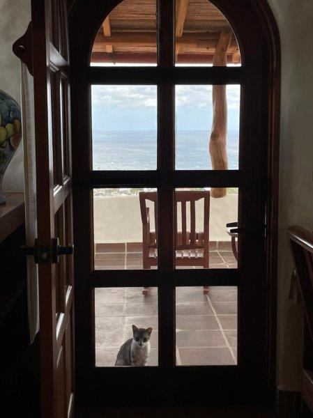 nicaragua-real-estate-pelican-eyes (8)