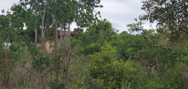 nicaragua-real-estate (39)
