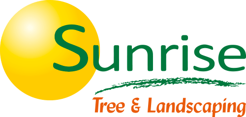 Sunrise Tree and Landscaping
