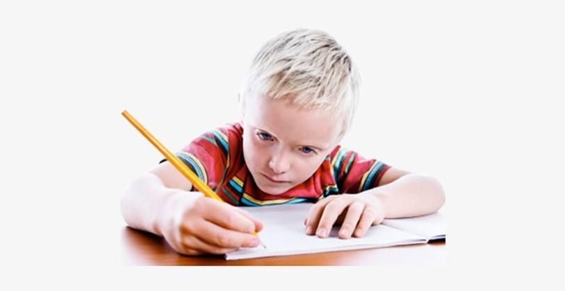 A Boy Writing PNG
