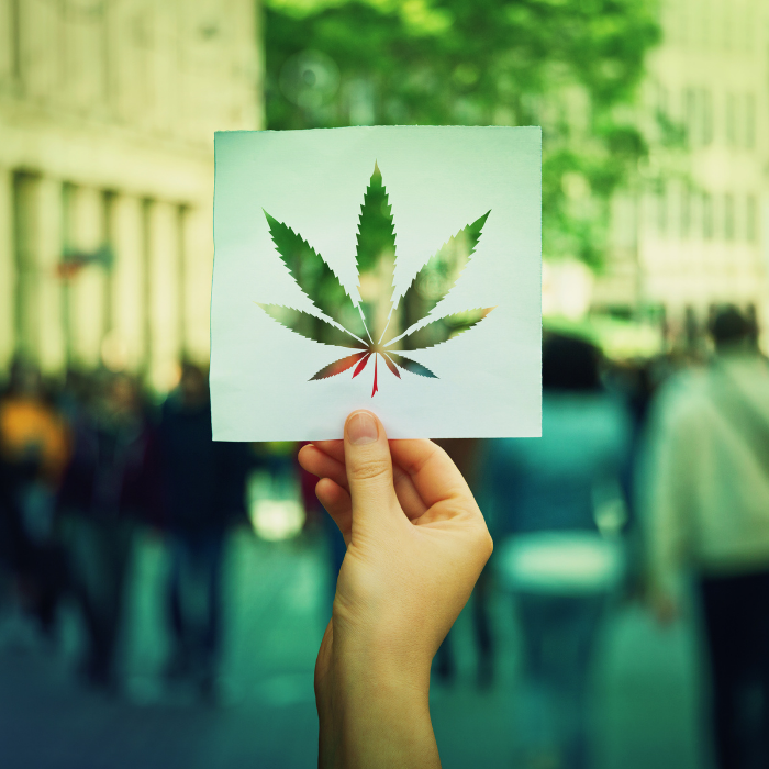 What's new in Cannabis 2021