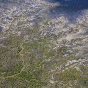 This image of the green blue patterns of floodplains was taken from a light aircraft over the Top End region of the Northern Territory, Australia.