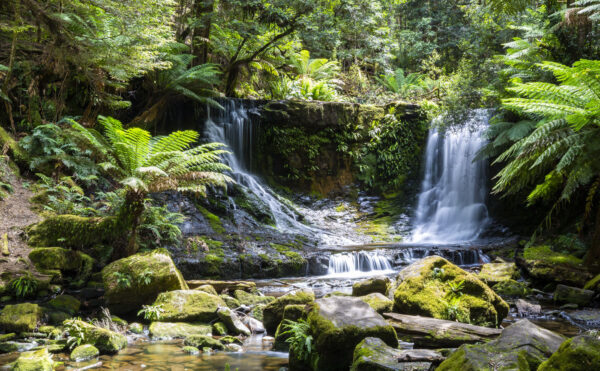 Summertime at Horseshoe Falls in Tasmania is still impressive even without the winter rains that fill these cascades.