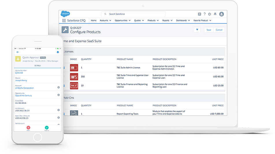 Salesforce Raleigh Consultant