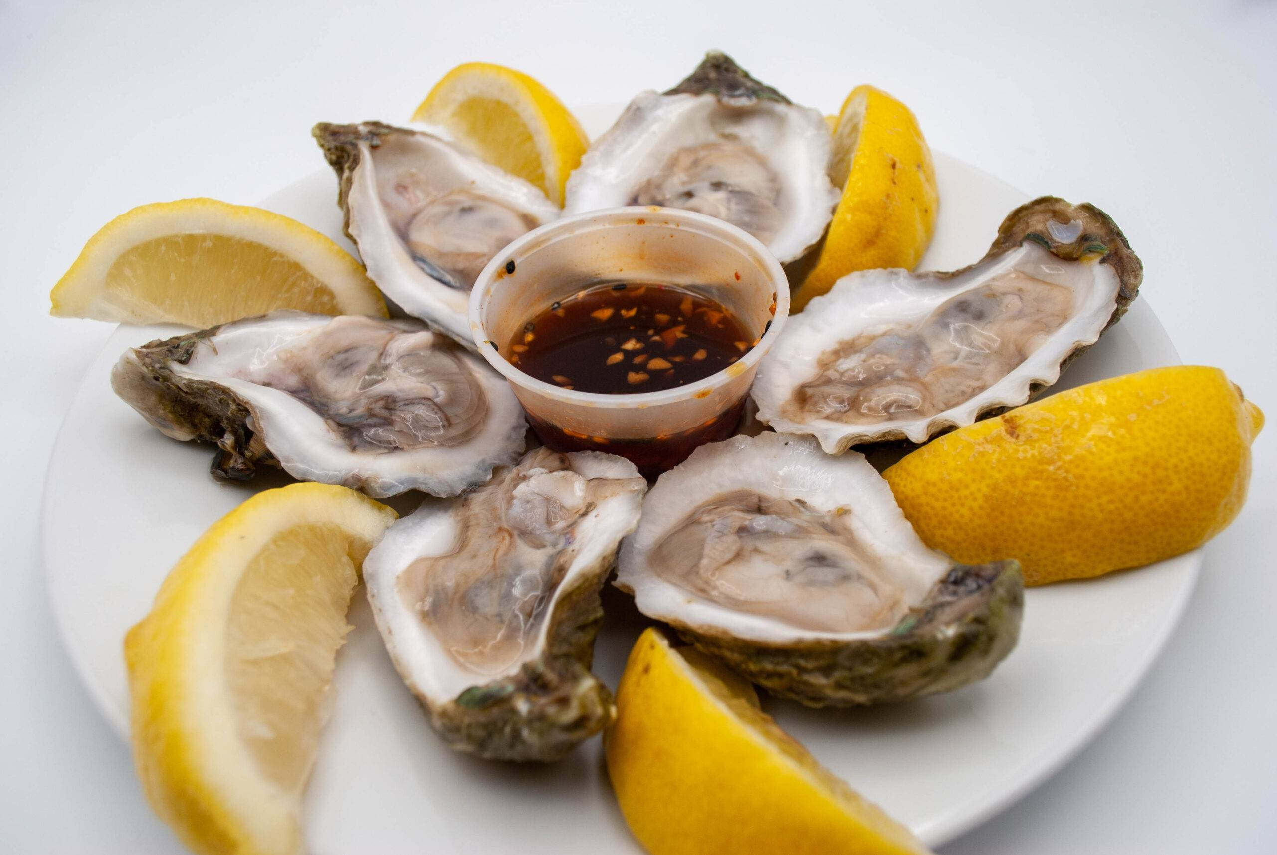Ahoy for Oysters!