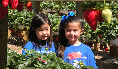 Enrichment Activities for students including field trip to strawberry patch