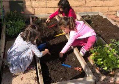 Kids working in school garden