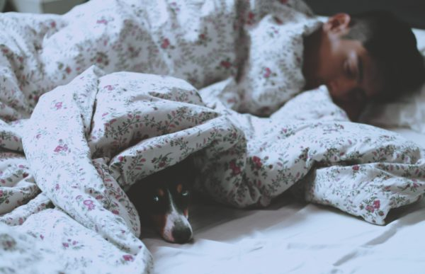 Health Benefits of Snoozing with Your Dog