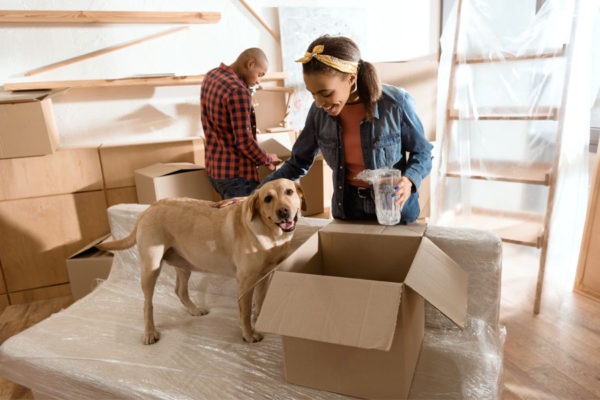 THINGS TO CONSIDER WHEN YOU ARE MOVING WITH A PET