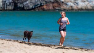 Top Tips for Exercising With Your Rescue Dog