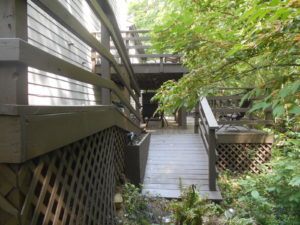 Deck Staining Fishers