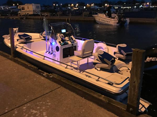 Motor City Charters Walleye boat
