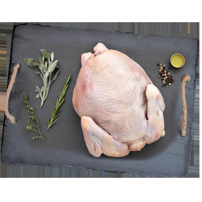 Grassroots Chicken