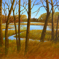 Mallard Marsh is an original 11 x 14 inches acrylic landscape painting © 2015 Marv Espe. Marshland with blue water is seen through the trees in autumn.