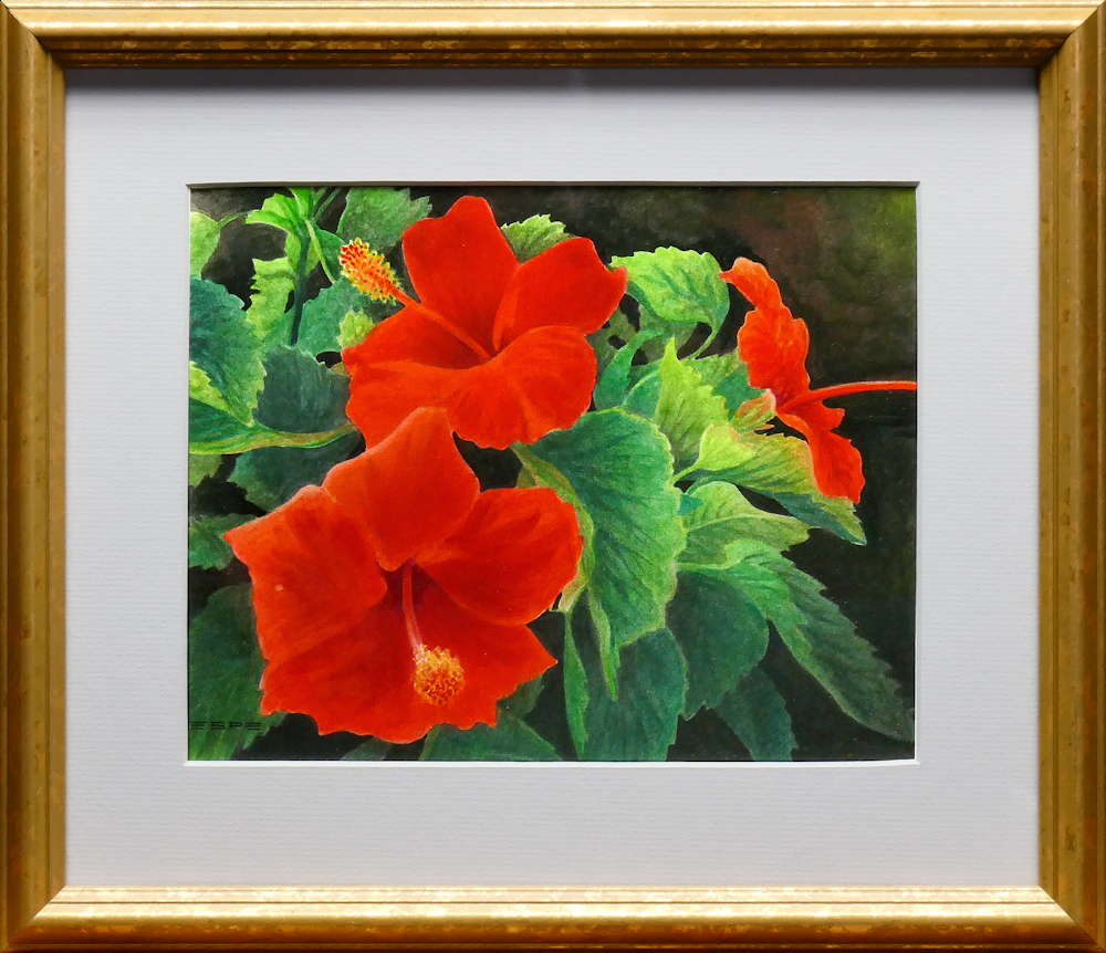 Ed's Geraniums is an original 11 x 14 inches water color floral painting © 2016 Marv Espe. Red geranium blossoms and green leaves.