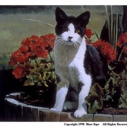 Puss N Planter is a 7 x 8 inches lithograph print © 1980 by Marv Espe