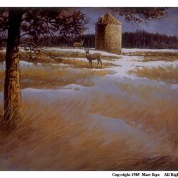 Whitetails at Winner is a 9.875 x 13.5 inches lithograph print © 1988 by Marv Espe, depicting beautiful white tailed deer in a meadow near an old silo.