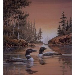 Remote Inlet is a 14½ x 10¾ inches lithograph print © 1992 by Marv Espe. Two common loons in a beautiful Minnesota lake landscape.