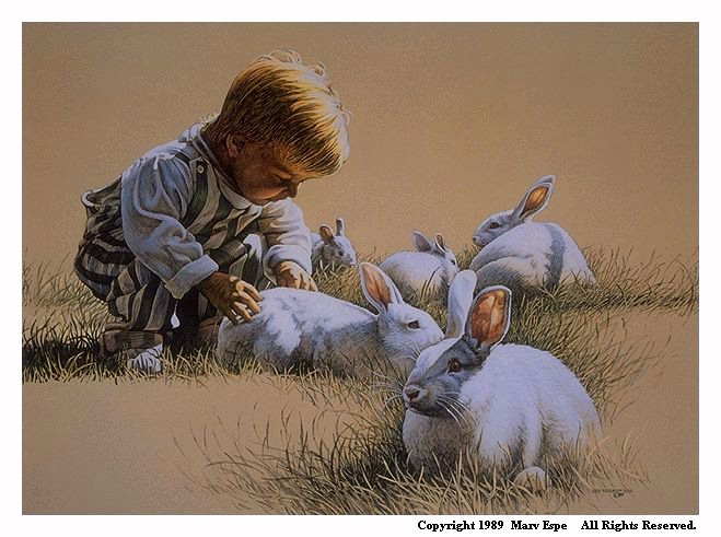 Bunny Boy is a 9.5 x 13.125 inches lithograph print of pen & ink w/ watercolor & acrylics © 1989 Marv Espe. A little blond boy petting one of serveral white bunny rabbits in the grass.