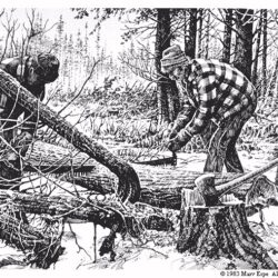 Cuttin' Cedar is a 9 x 13 inches lithograph print of pen & ink © 1983 Marv Espe. Two men are cutting a cedar log with a cross cut saw in a winter scene with snow on the ground.