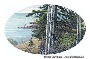 Birch on North Shore is a 5 x 7.5 inches gicleé print of pen & ink w/ watercolor © 2003 Marv Espe. Birch tree trunks are seen along the North Shore of Lake Superior in Minnesota.