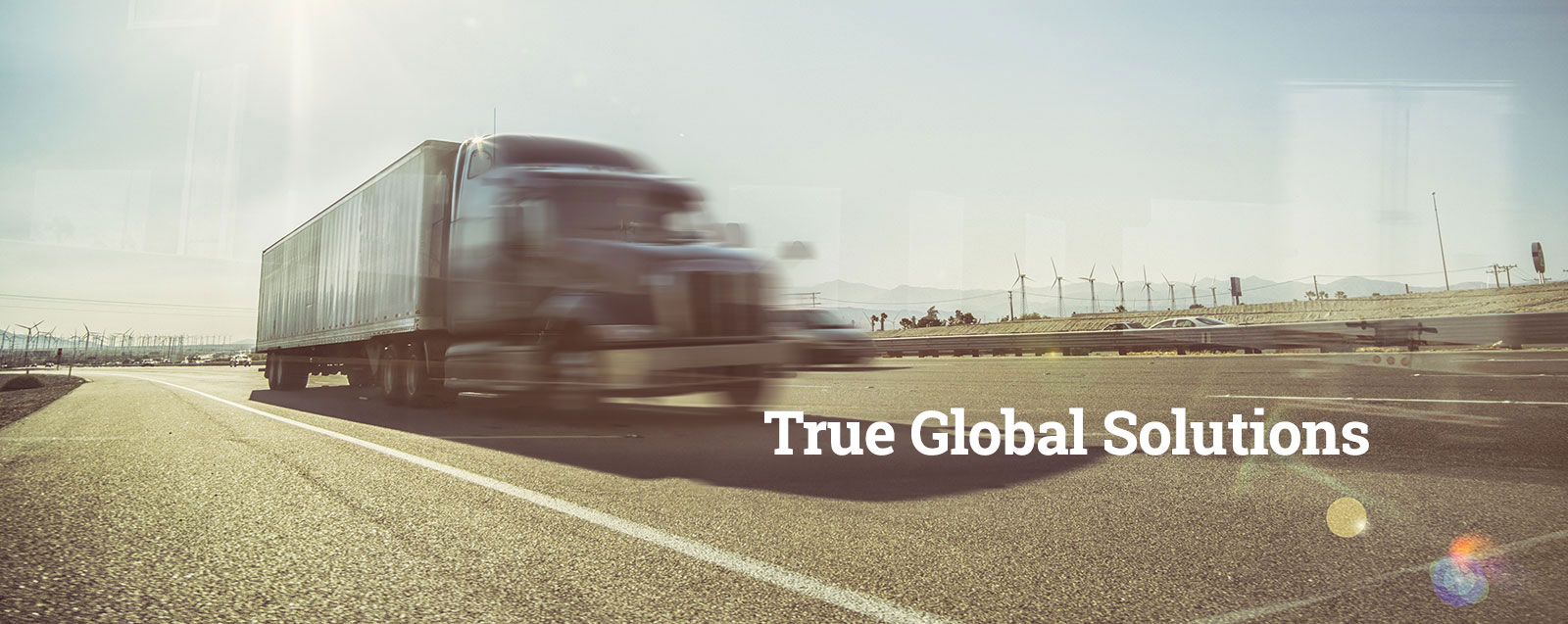 True Global Solutions