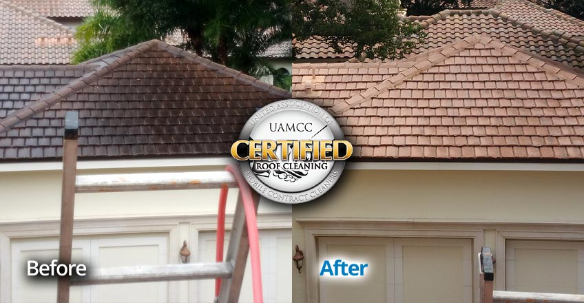 Roof Stain removal Seminole County Central Florida