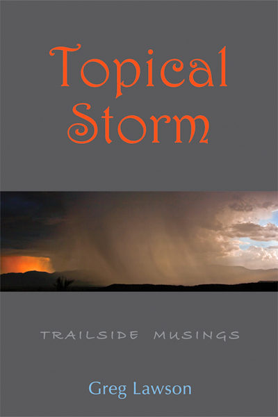 Topical Storm by Greg Lawson