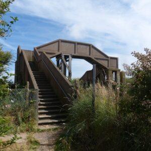 What does a 21st Century footbridge look like?