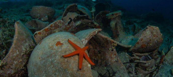 Diving Vis Island