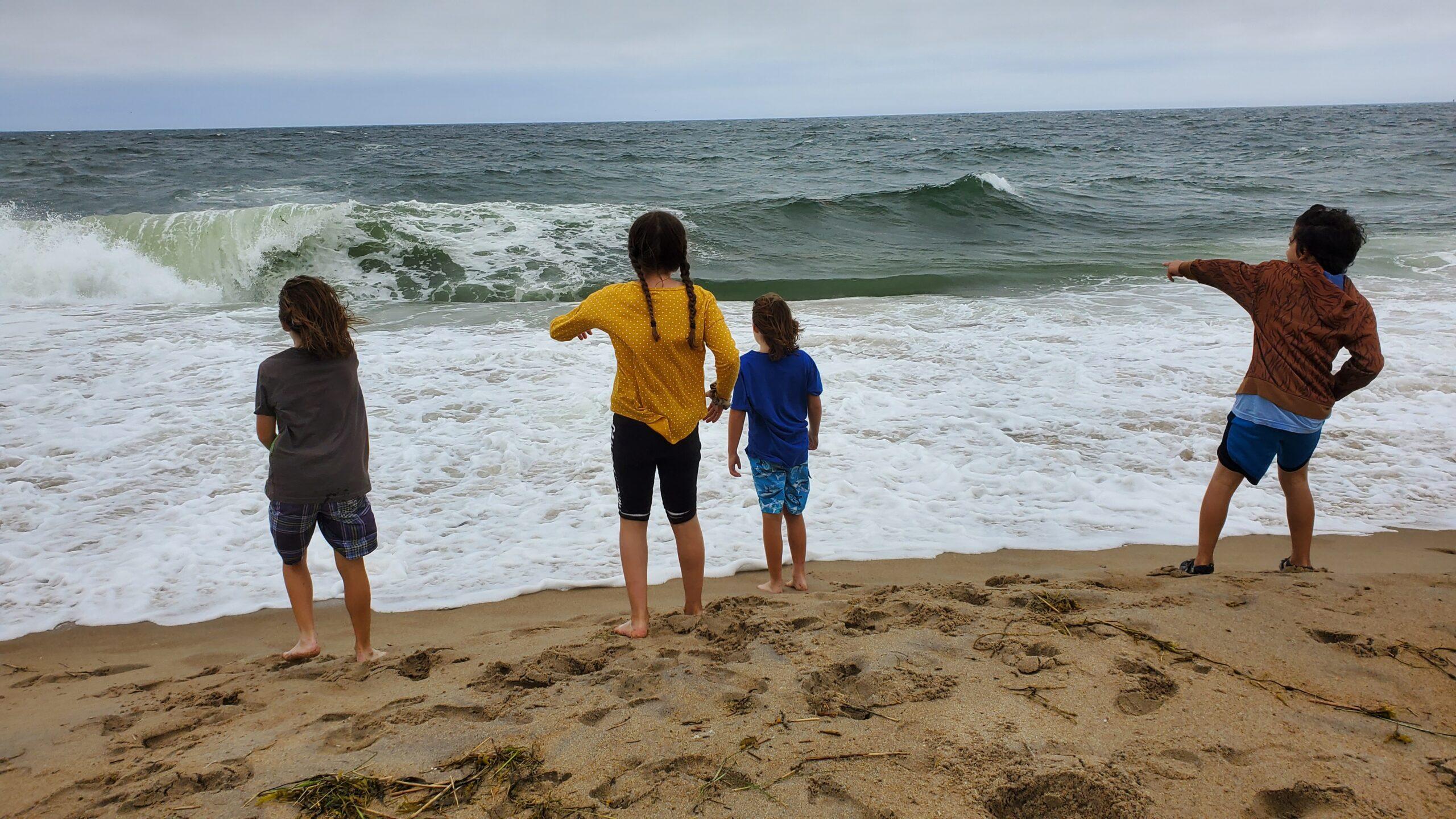 Pandemic Field Trip to Salisbury Beach