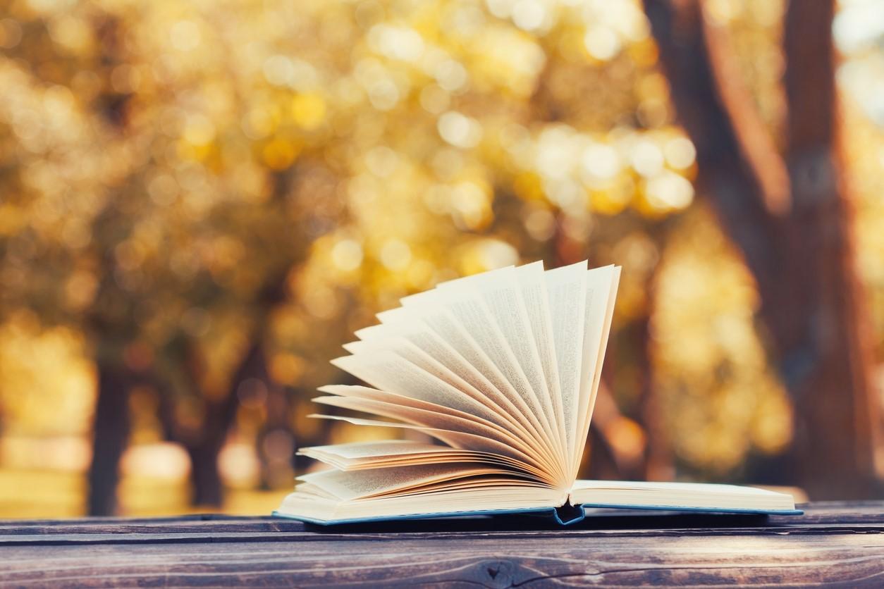 Stuff Worth Reading – October 2017