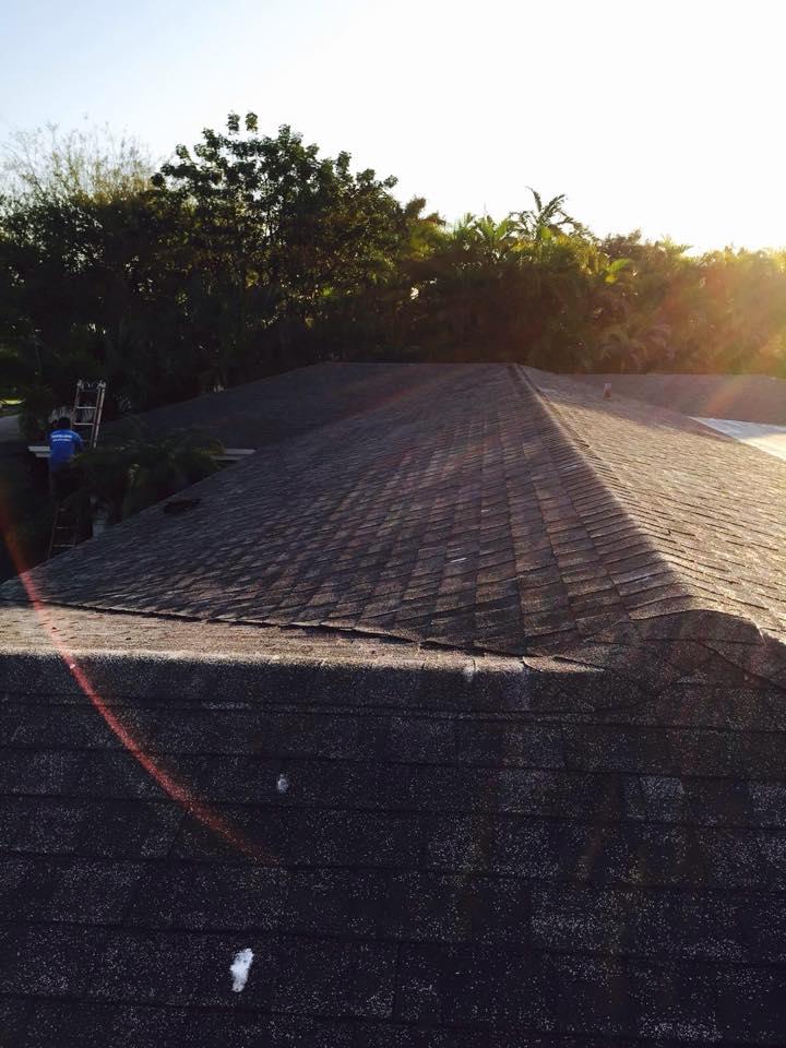 Roofing Palmetteo Bay