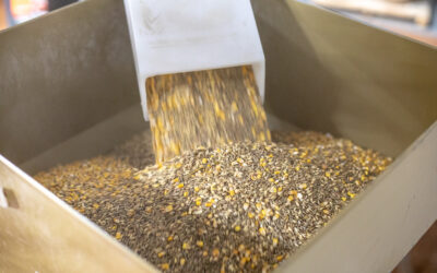 Our 1,000th Mash