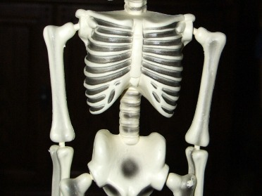 Osteoporosis...What You Need To Know