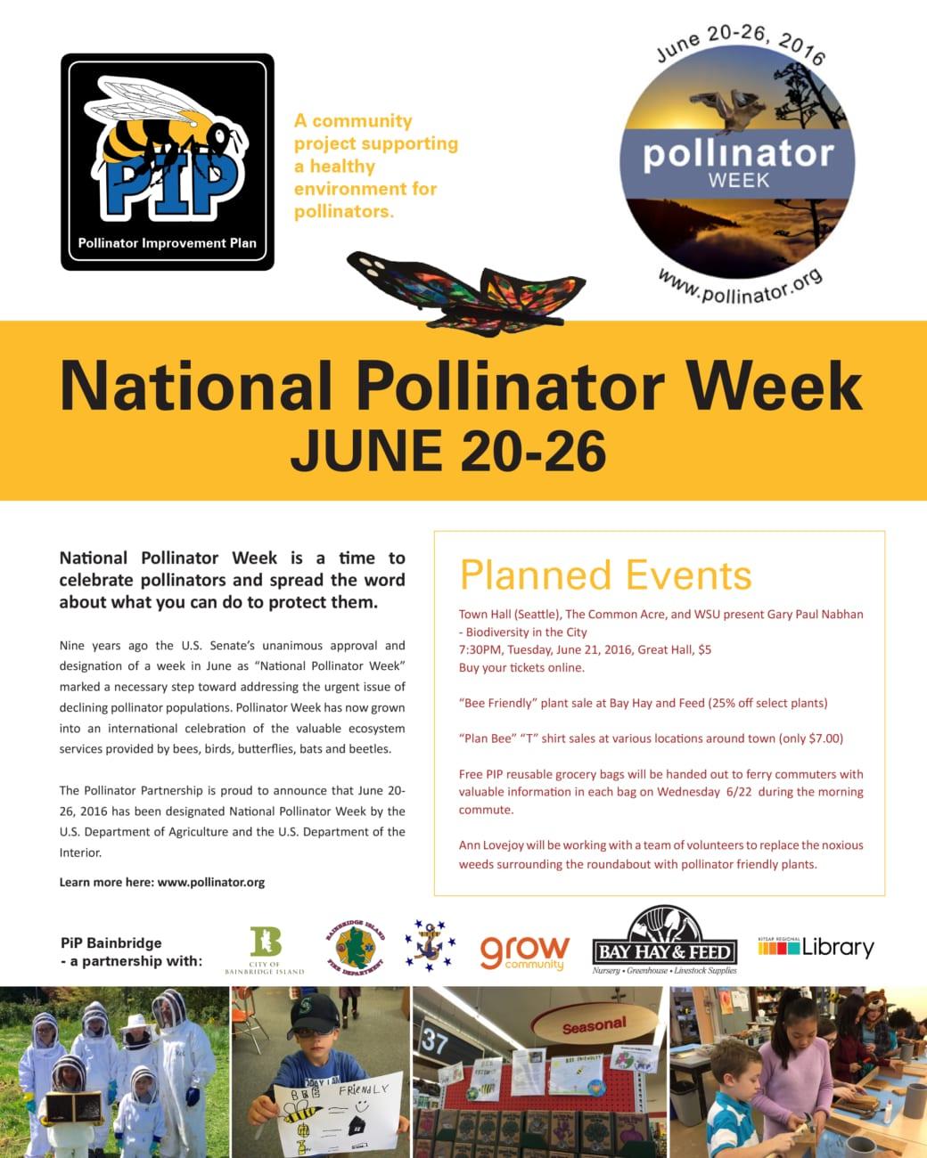 Pip-national-week-flier 11x14