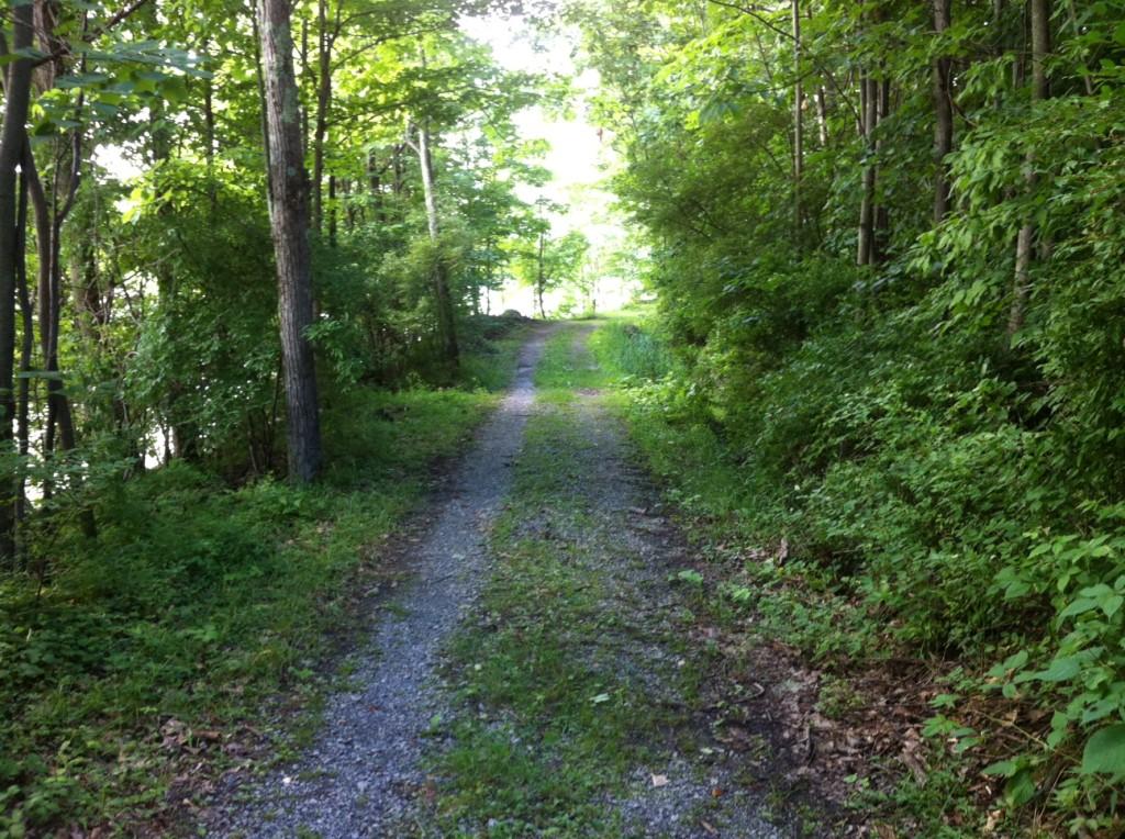 Canadice trail