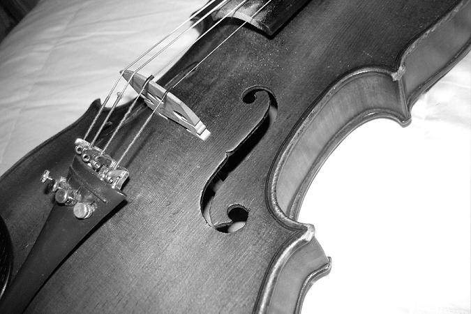 violin bw