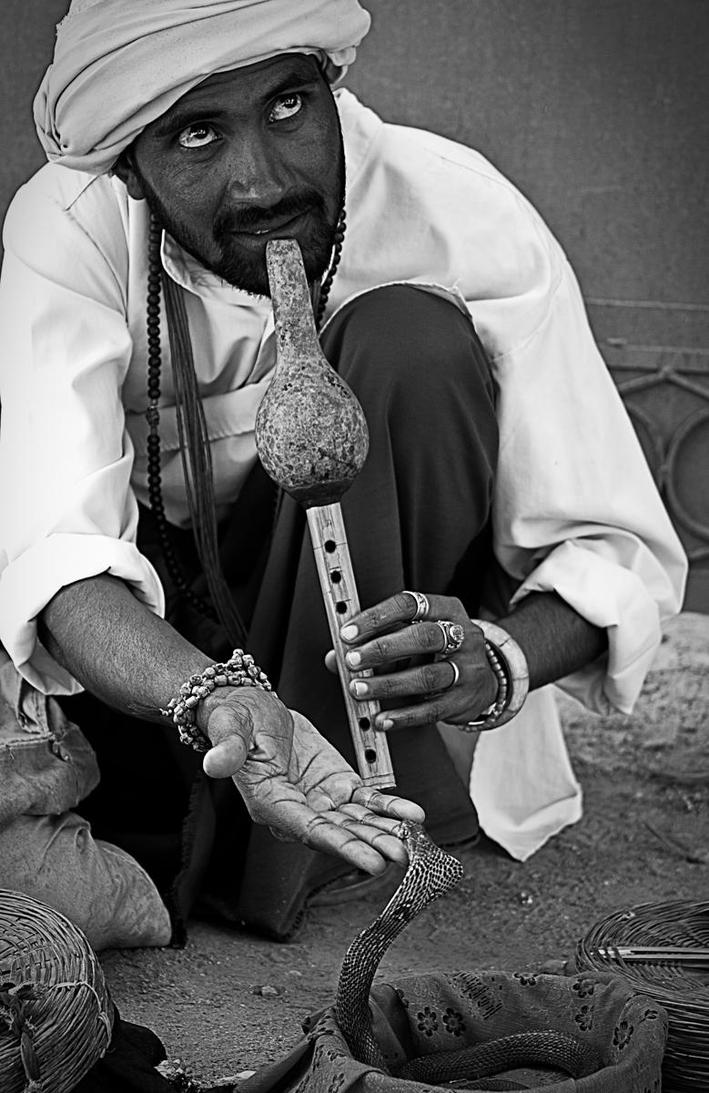 Snake Charmer - Leh