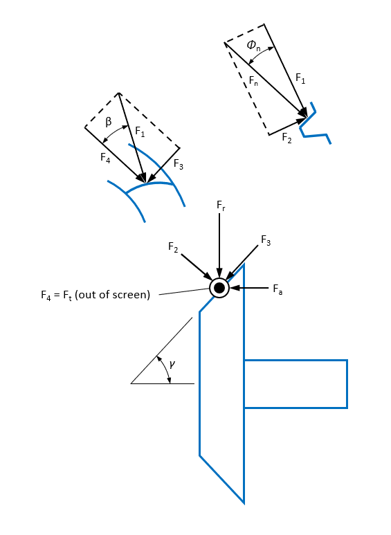 Pinion forces - convex side